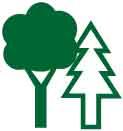rainforest symbols