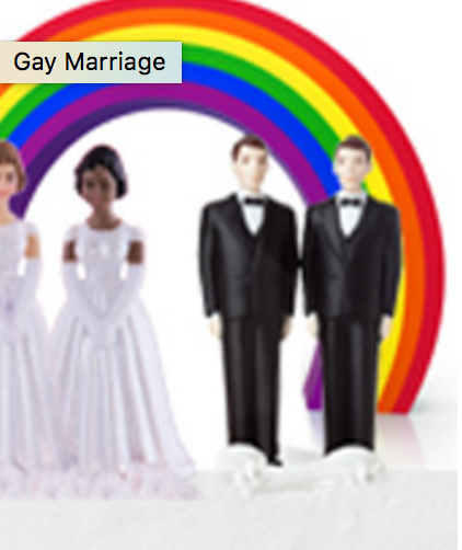 The controversy surrounding the topic of gay marriage