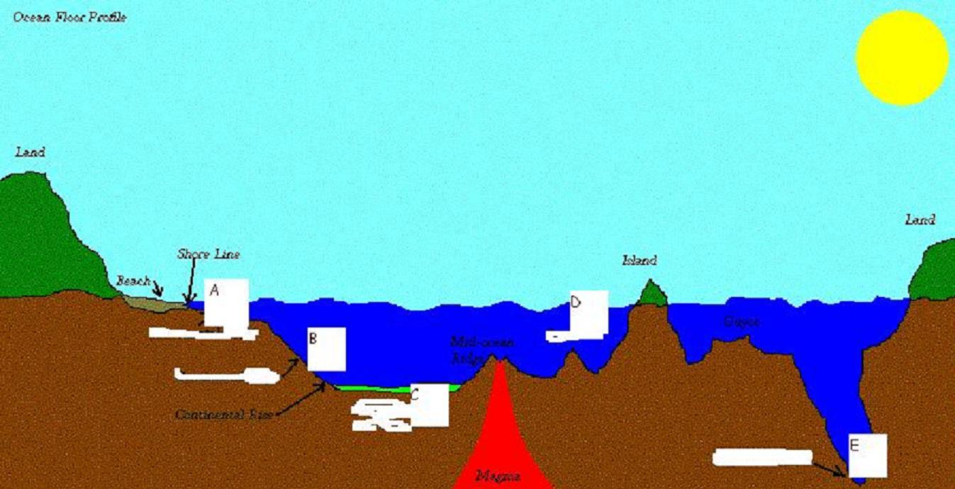 Ocean floor project floor ideas for 10 facts about sea floor spreading