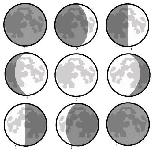 Place the moon phases in the correct order