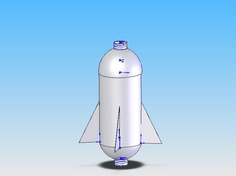 bottle rocket essay