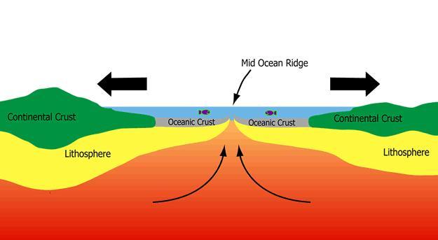 Sea floor spreading definition geography thefloors co for Ocean definition geography