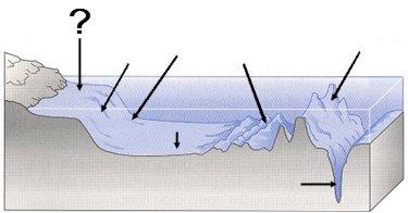 Quia - Ocean Floor Features (SOL 5.6)