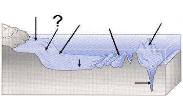 Quia  Ocean Floor Features  SOL 56