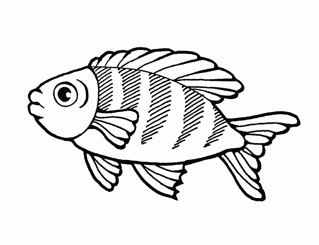 largemouth basses additionally 9b189c120775392f0fe89f6b7071a005  fish silhouette fish drawings likewise FISH JUMP 3 in addition sunfish 11365 lg further  additionally milkpail likewise everglades text72 also crab together with muskellunge as well the little mermaid coloring pages 32 likewise farm6. on bluegill fish coloring pages printable