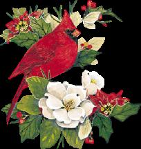 external image cardinals.png